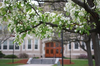 A lovely view of Hawkin's Hall in spring.